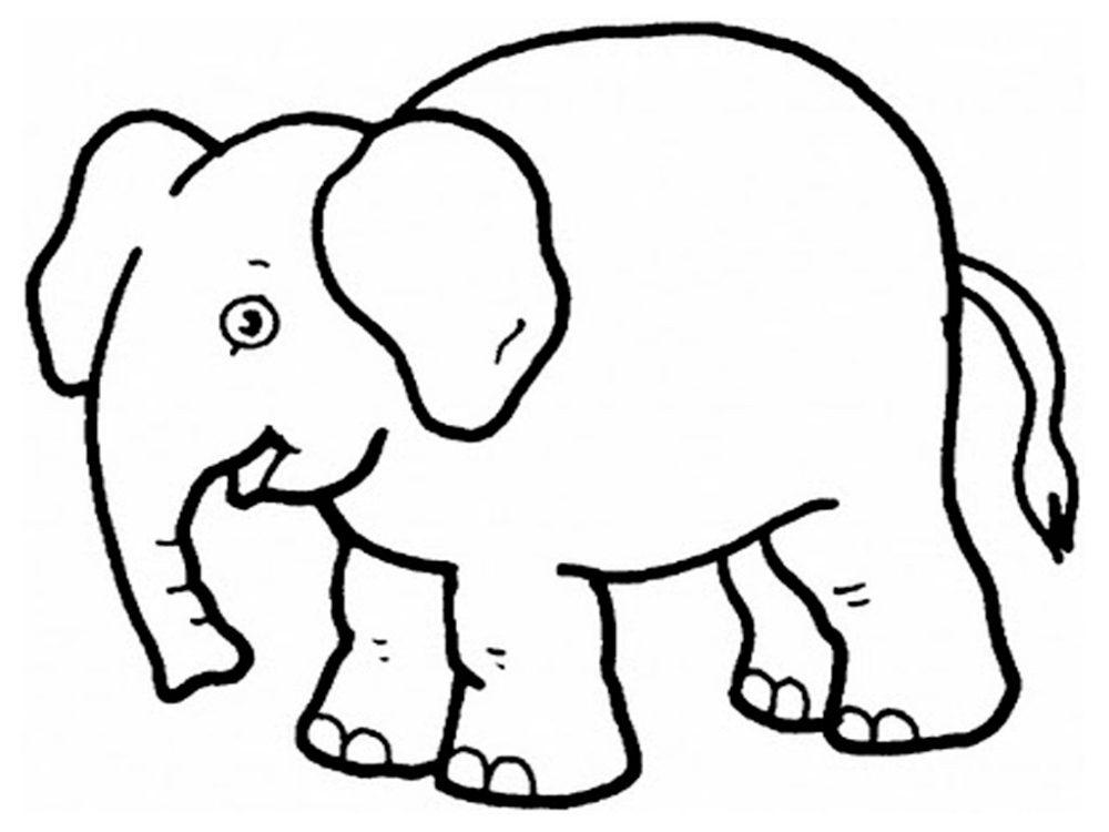 Galería de imágenes: Dibujos de elefantes