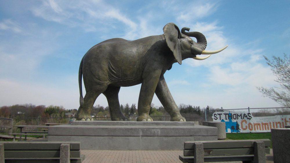 Jumbo el elefante